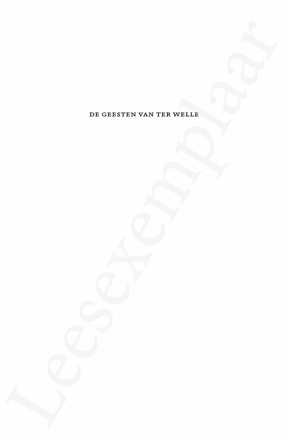 Preview: De geesten van Ter Welle
