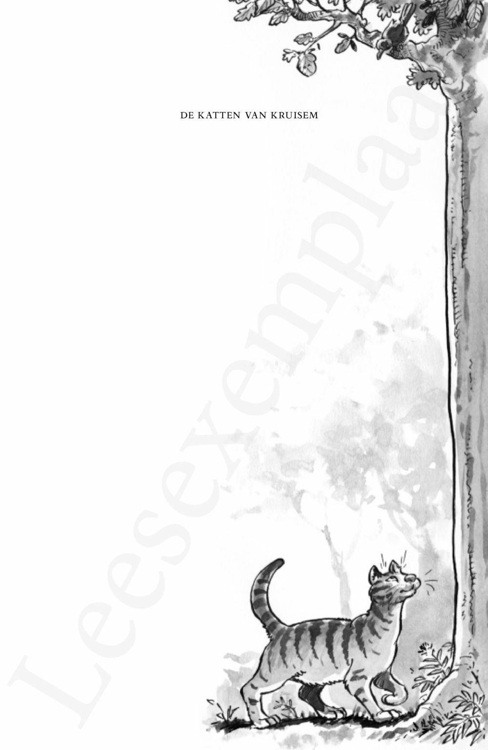 Preview: De Katten van Kruisem