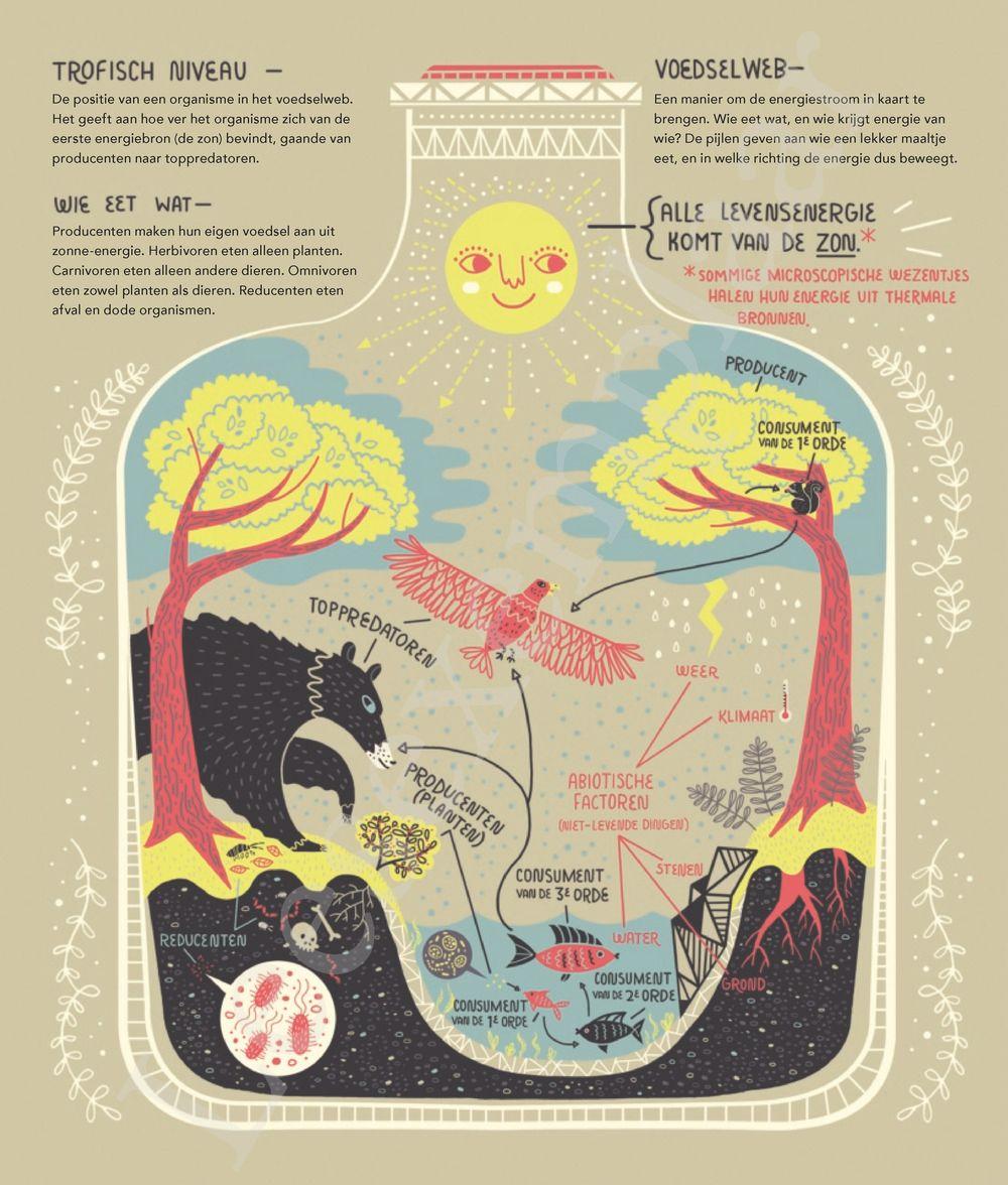 Preview: De wondere werking van planeet aarde