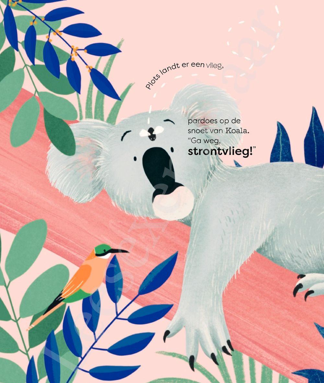 Preview: Koala zit verstopt