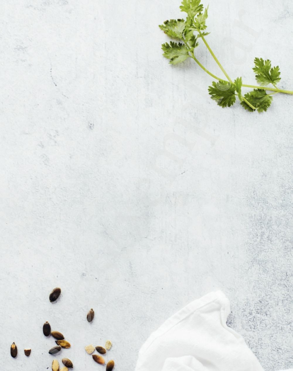 Preview: Chloé Kookt